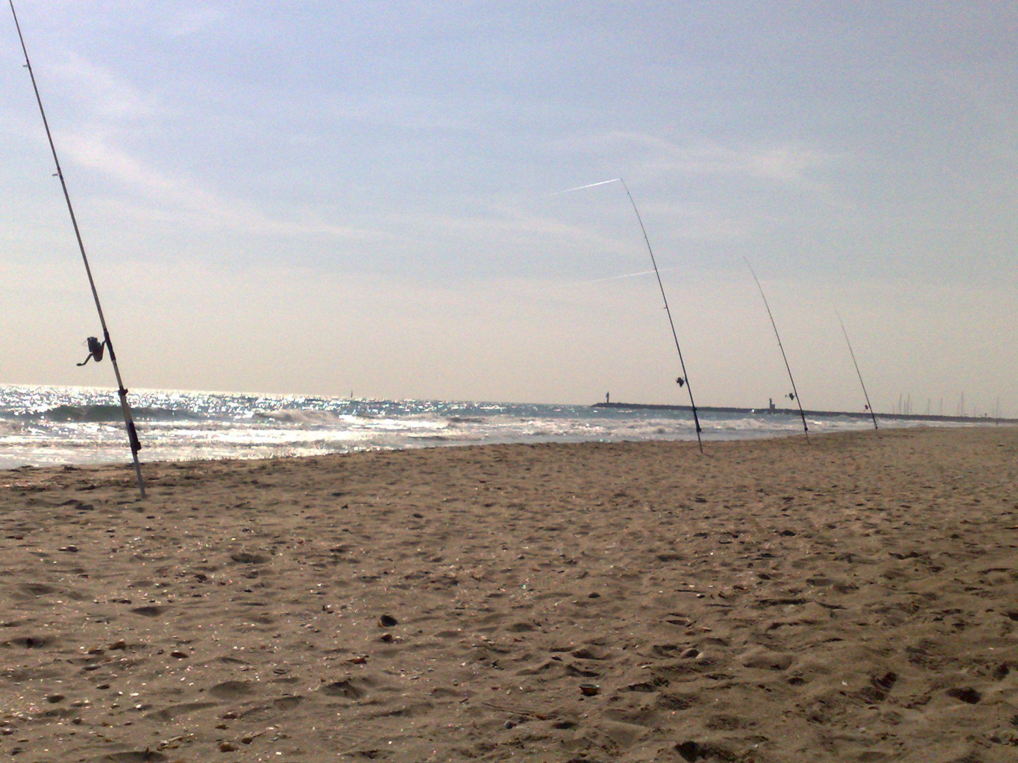 surfacasting mediterranee