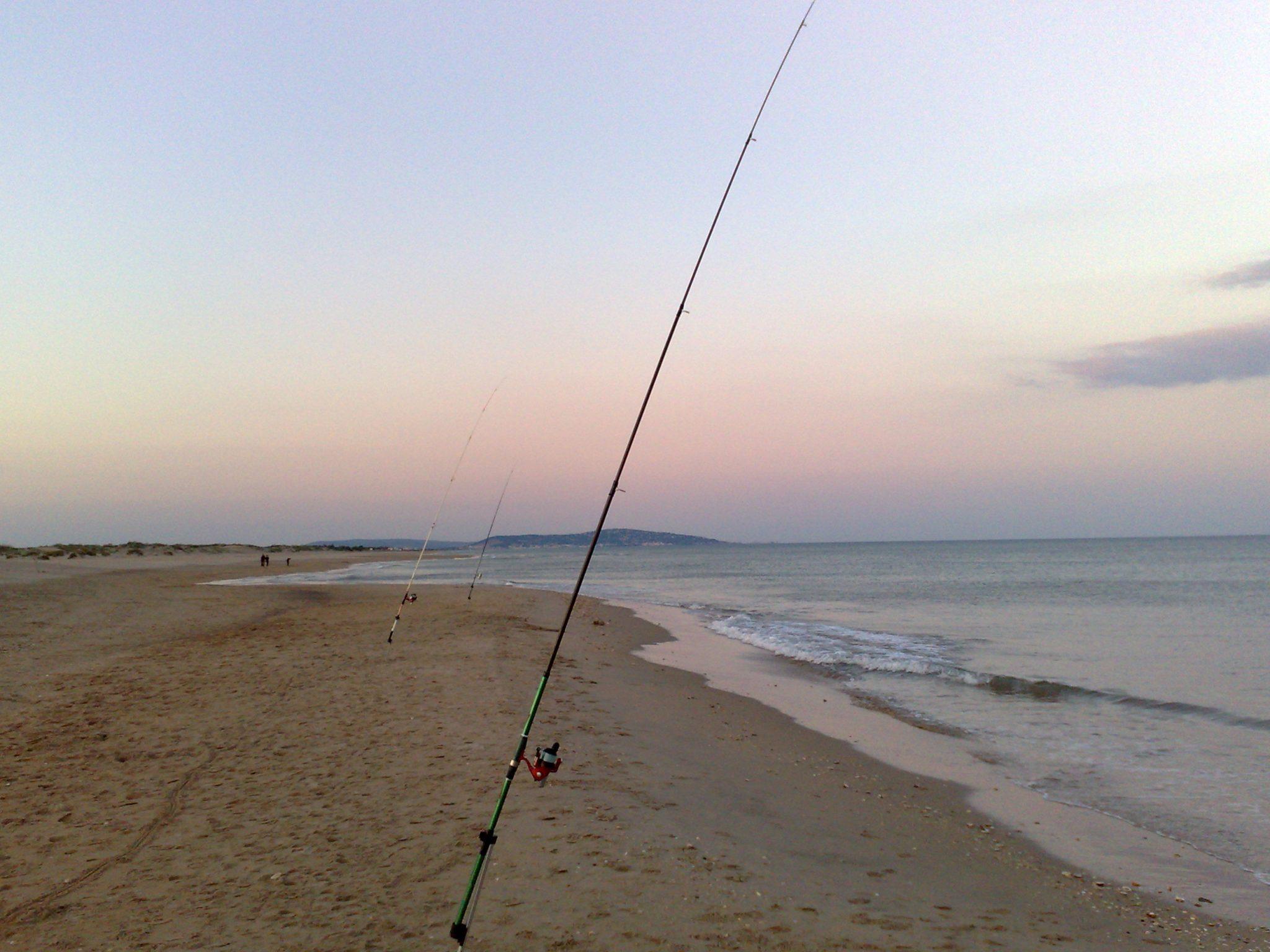Pêche dorade en aout
